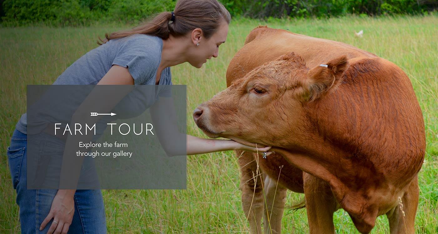 Bogside Farm Tour